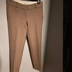 Ann Taylor Loft Petite dress pants
